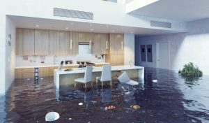 emergency water extraction, emergency water removal